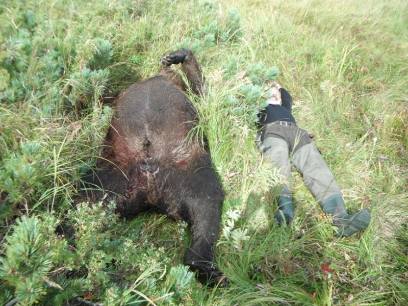 Novinka Poľovačka Na Medveďa Kamčatka