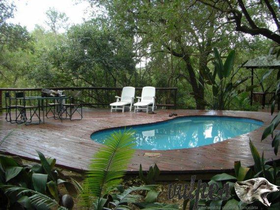 Bazén na Farme - Safari