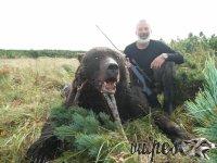 Poľovačka na medveďa