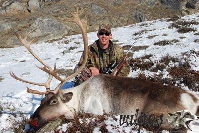 Poľovačka Grónsko