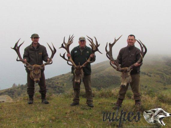 Poľovačka jelene